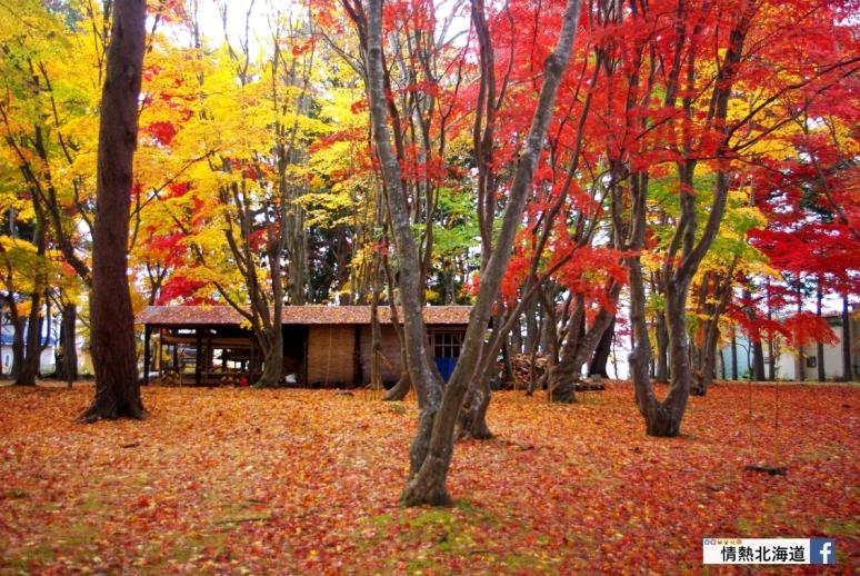 Miharashi_Park(Kousetsuen)-1