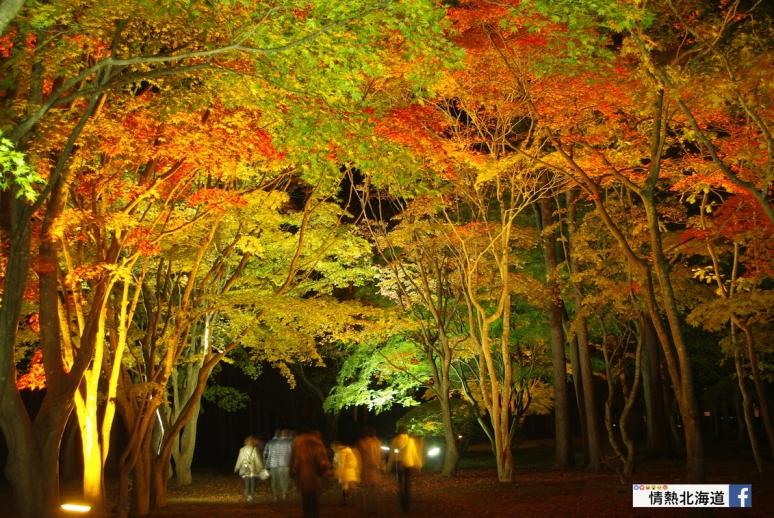 Miharashi_Park(Kousetsuen)-2