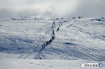 來滑雪的人排成一列。